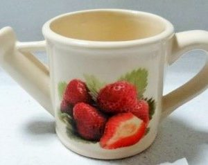 G1-628 - Lge. Watering Can Flower Pot (Strawberries)-0